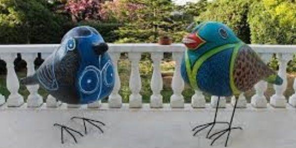 BIRDS IM6